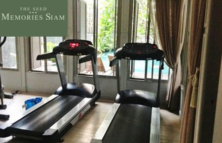 the-seed-memories-siam-gym
